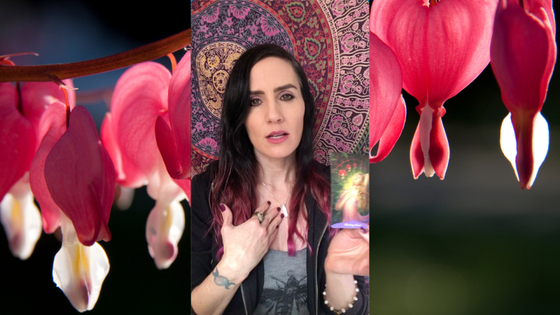 Reading from MAGIC OF FLOWERS ORACLE for the Week of 1/18/2021 — Tess Whitehurst